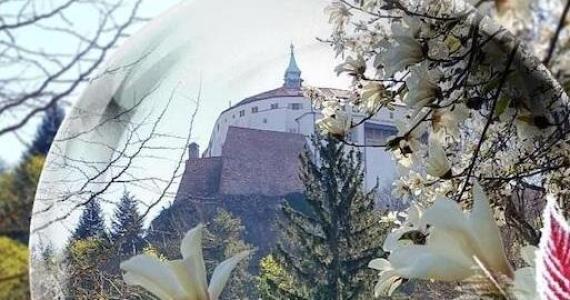Veľkonočný príhovor nitrianskeho diecézneho biskupa Viliama Judáka
